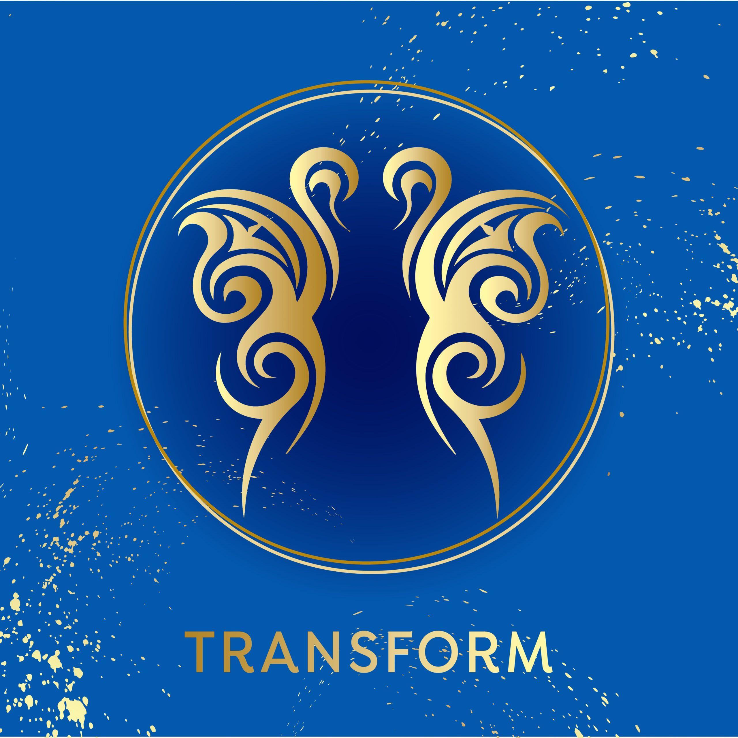 Transform Program mage
